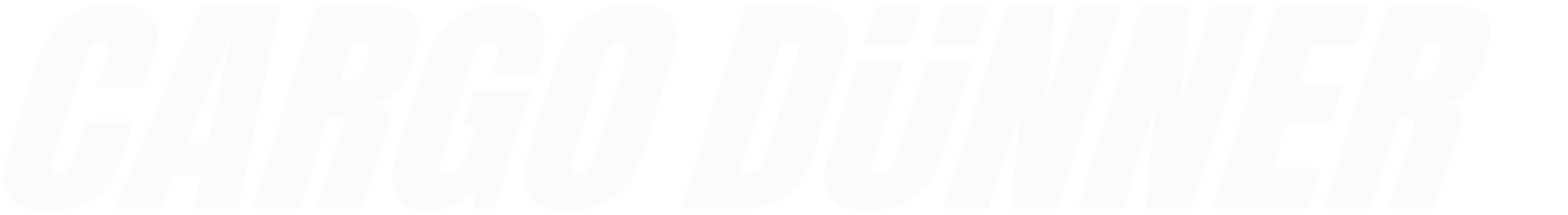 CARGO_DUENNER_LOGO_W_2020.png